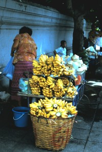 Street Vendor in Bangkok, Thailand.  Photo by Sue Jimenez
