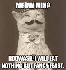 Cat Food Snob