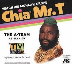 Even Mr. T has a Chia Pet