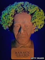 Looks like this President Obama Chia Pet needs a trip to the barber