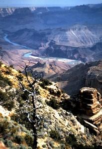 Grand Canyon, Arizona, 1997 (Photo by Sue Jimenez)