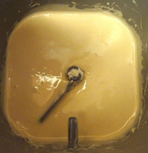 The sponge is nicely mixed after about 5 minutes.  Now, let sit at least 8 hours, preferably overnight