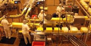 No  napping in cheese factories in South Dakota! (Photo Credit:  www.minitime.com)