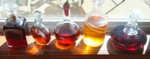 From left to right: Plum Liqueur, Cherry Liqueur, Cherry Vodka, Methley Plum Liqueur, Slivovitz, all courtesy of my fruit trees.