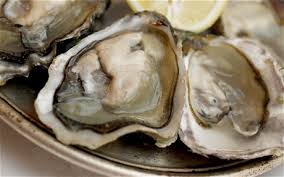 Serve up a plate of raw oysters on the half shell for breakfast to really delight the family!  (Photo Credit:  www.telegraph.co.uk)