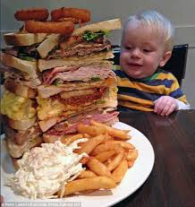 "Don't tell this youngster that ""Sandwiches Are nutritious Too!"" or he'll push it away!  (Photo Credit:  www.dailymail.co.uk)"