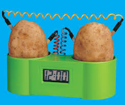 A potato clock, similar to the one my Dad bought for me years ago (Photo Credit:  scientificsonline.com)