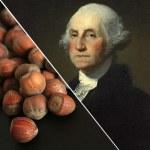 George Washington was apparently very fond of hazelnuts (Photo Credit: www.everydayhealth.com)