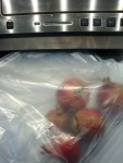 Using the Foodsaver (or similar) appliance, I was able to seal the bag very effectively