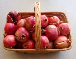 Our small harvest of pomegranates at our current residence (squirrel got the rest!)